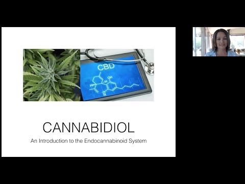 Benefits of CBD and Endocannabinoid System