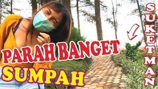 FUNNIEST PRANK PARAH BANGET   BUSHMAN PRANK   PRANK MANUSIA POHON