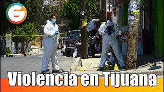 800 asesinatos violentos en lo que va del año en Tijuana
