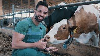 Von Milch zu Eiweißpulver – Woher bekommt Myprotein seine Rohstoffe?
