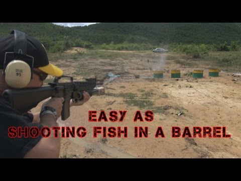 Shooting Fish In A Barrel