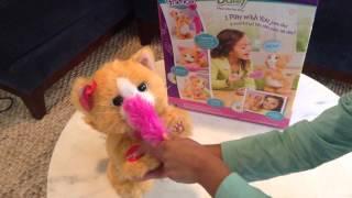 Hasbro Fur Real Friends - Surprise Toy Opening! Daisy Kitten Stuffed Kitty