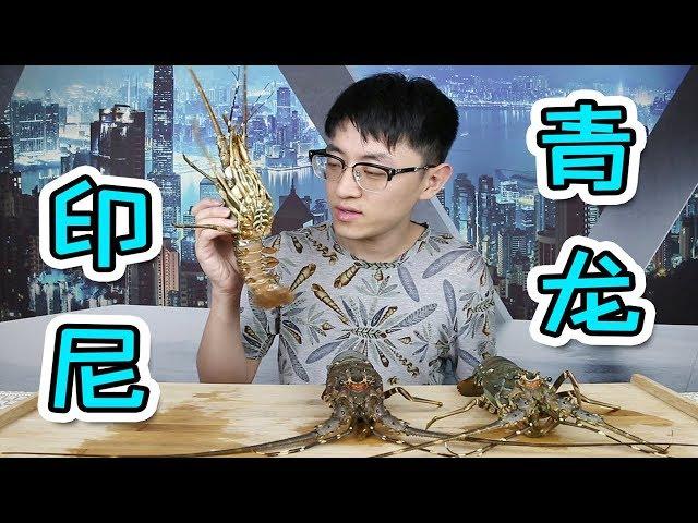 【大祥哥來了】龍蝦中的黃油蟹?跟它比澳龍都是弟弟!目前吃過最好吃的龍蝦! !