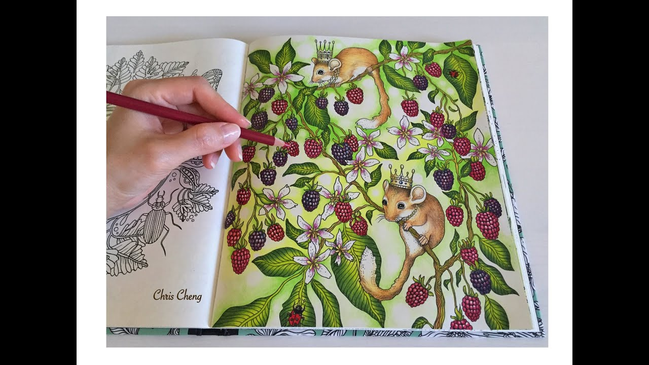 mouse wonderland daydreams coloring book coloring with colored pencils