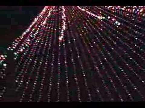 Austin, Texas Lighting of Zilker Tree.