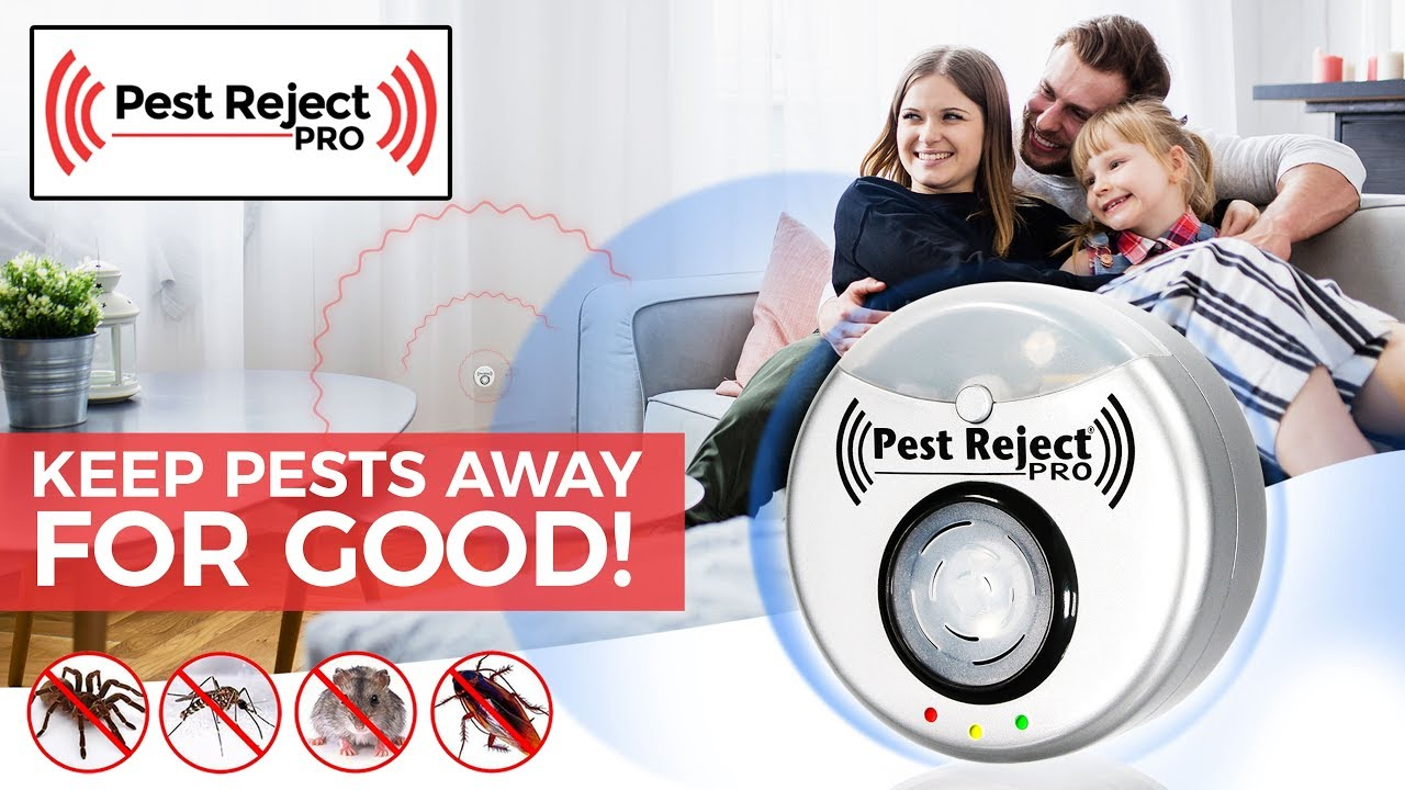 Pest Reject Pro - Creepy