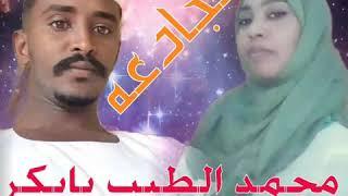 مجادعه محمد الطيب بابكر/ اماني صلاح