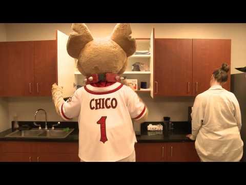 Good Morning Chico