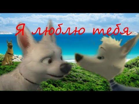 Белка, Вольт и Казбек: Я люблю тебя