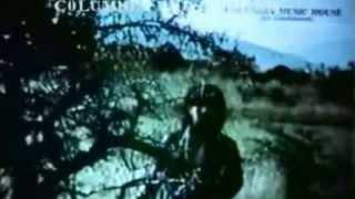 Mehangale Ingu Varungale En Thalaivi Irukkum Idam Thedungal