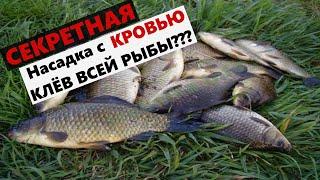 КАРАСИ В ШОКЕ Добавил КРОВЬ в рыболовную насадку