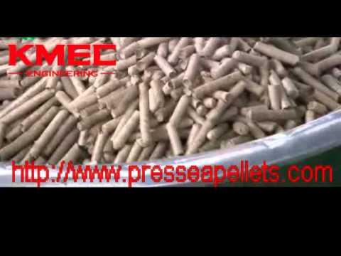 Unite mobile de pelletisation/Fabricant de presse à granule