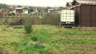 Fait divers : les jardins familiaux de Guyancourt excédés par les cambriolages