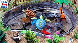Let's Learn Sea Animal Names! - Fun Sea Animals Toys Video