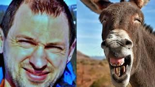 люди похожие на животных от фото студии for you