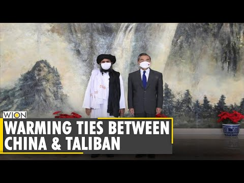 Beijing welcomes Taliban's political leaders and delegates   Latest World English News   WION news
