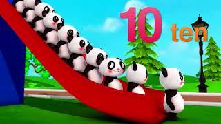 十只小动物歌   儿歌   童谣   LittleBabyBum