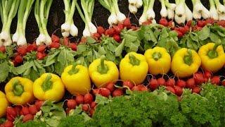 FBNC - Nông nghiệp hữu cơ: Thời cơ đã đến?