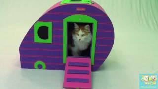 зоотовары ZooStar.com.ua домики для кошек и собак(, 2011-08-05T19:12:01.000Z)