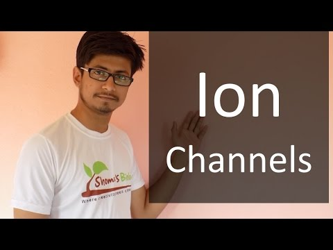 Ion channels (voltage gated, ligand gated, stress activated ion channel)
