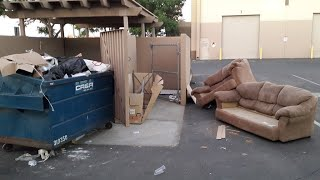 Dumpster Diving In Rich Neighborhoods thumbnail