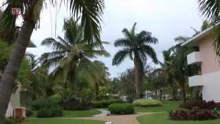 Dominican Republic - Hotel Catalonia Bavaro - Punta Cana
