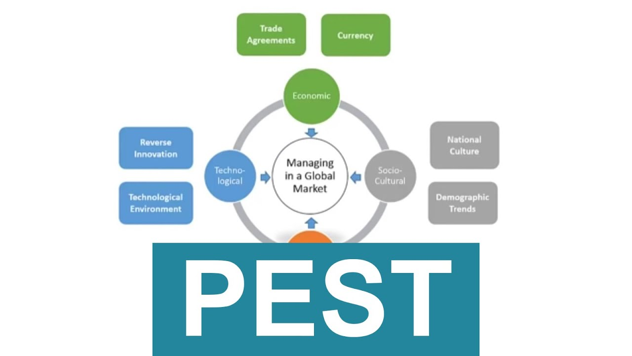 Definition of Pest Analysis | What is Pest Analysis ? Pest Analysis