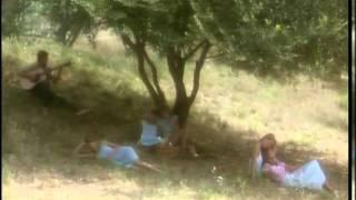 Laura - Les Ombres De L'été - 5 -