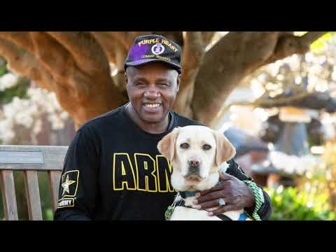 VA Study Shows Service Dogs Impact Veterans with PTSD Canine Companions? applauds expansion of VA insurance benefits for Veterans