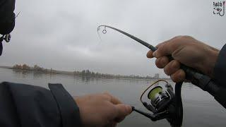 Рыбалка на джиг поздней осенью Судак один в один