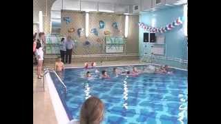Открытие бассейна Чайка Нептун
