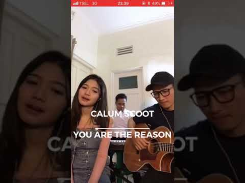 Free Download You Are The Reason - Calum Scott (cover) Maria Eka Apocalive Mp3 dan Mp4