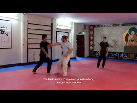 Ti Shou Shang Shi - Wu Taiji Quan Application