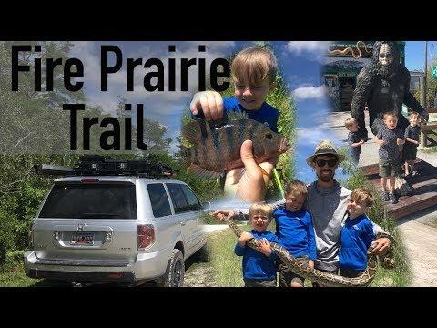 Fire Prairie Adventure: Python, Fish, Alligators