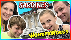 SARDINES IN AN UPSIDE DOWN HOUSE | HIDE AND SEEK | We Are The Davises