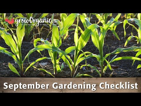 September Gardening Checklist - 25 Organic Gardening Tips to Get You Through September