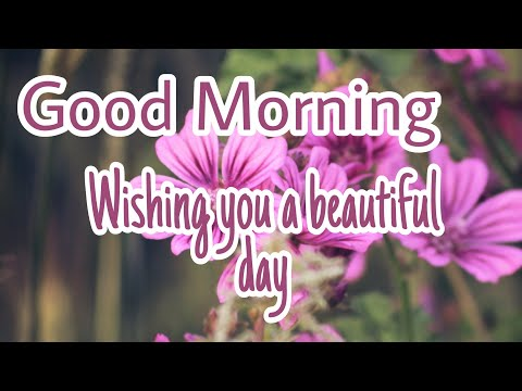 Good Morning Wishes, Quotes, Greetings | Good Morning Whatsapp Status Video | Inspirational Quotes