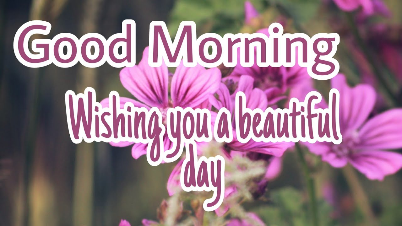 Good Morning Wishes Quotes Greetings Good Morning Video Inspirational Quotes Youtube