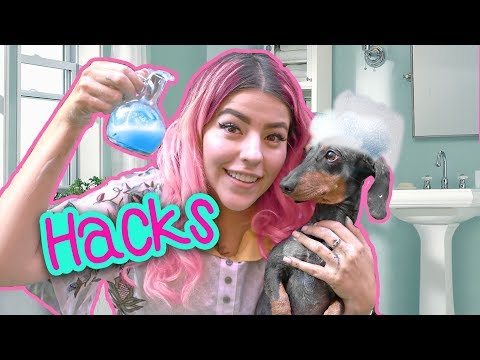 DOG HACKS | MUSAS LESSLIE LOS POLINESIOS
