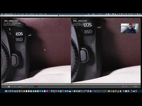 Canon 90d Vs 80d High Iso Image Quality Test