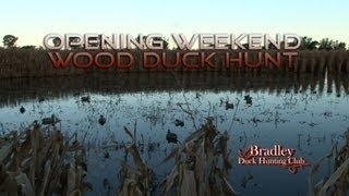 Bradley Duck Hunting Club - Opening Weekend Wood Duck Hunt - Part 1!