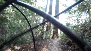 Santa Cruz UCSC Trails.....