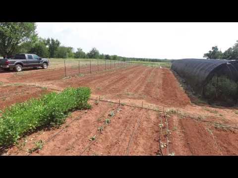 Provision Organic Farm - Drone Flyover 3