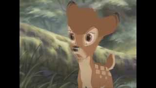 Bambi Lovin Each Day Ronan Keating