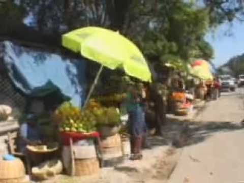 Haiti Earthquake: Business reopens