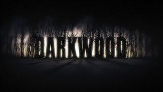 Darkwood Game and Loot Unboxing!
