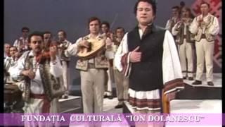 Ion Dolanescu - Calatorule din drum