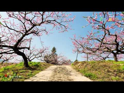 Anhui Tourism Landscape has a soul
