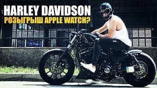Harley Davidson Sportster / Custom bobber Bike