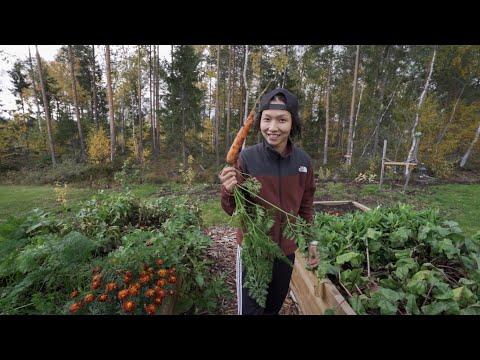 FUN TIMES IN OULU FINLAND